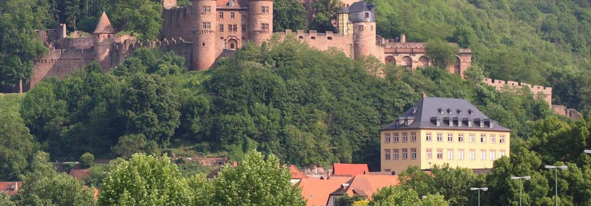 Ensemble Burg und Main